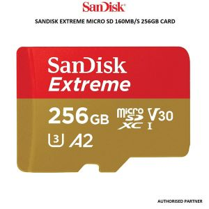 Picture of Sandisk Ext Micro SD 160mb 256gb Card